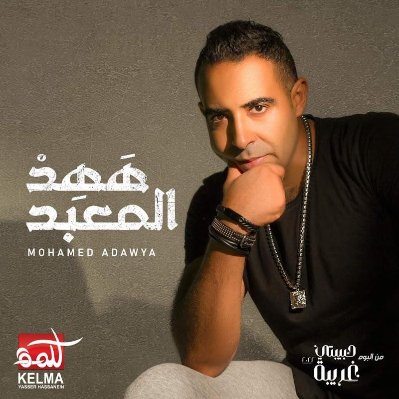 Mohamed Adawya
