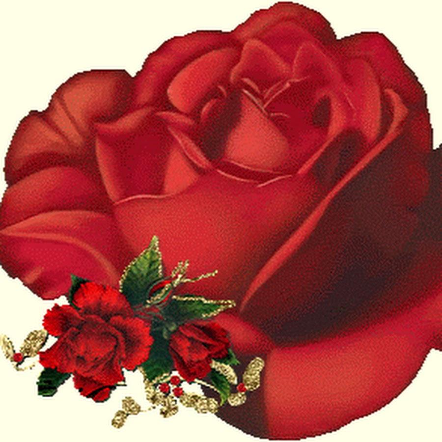 Гифки самые красивые цветы розы ты супер