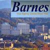 Barnes Insurance
