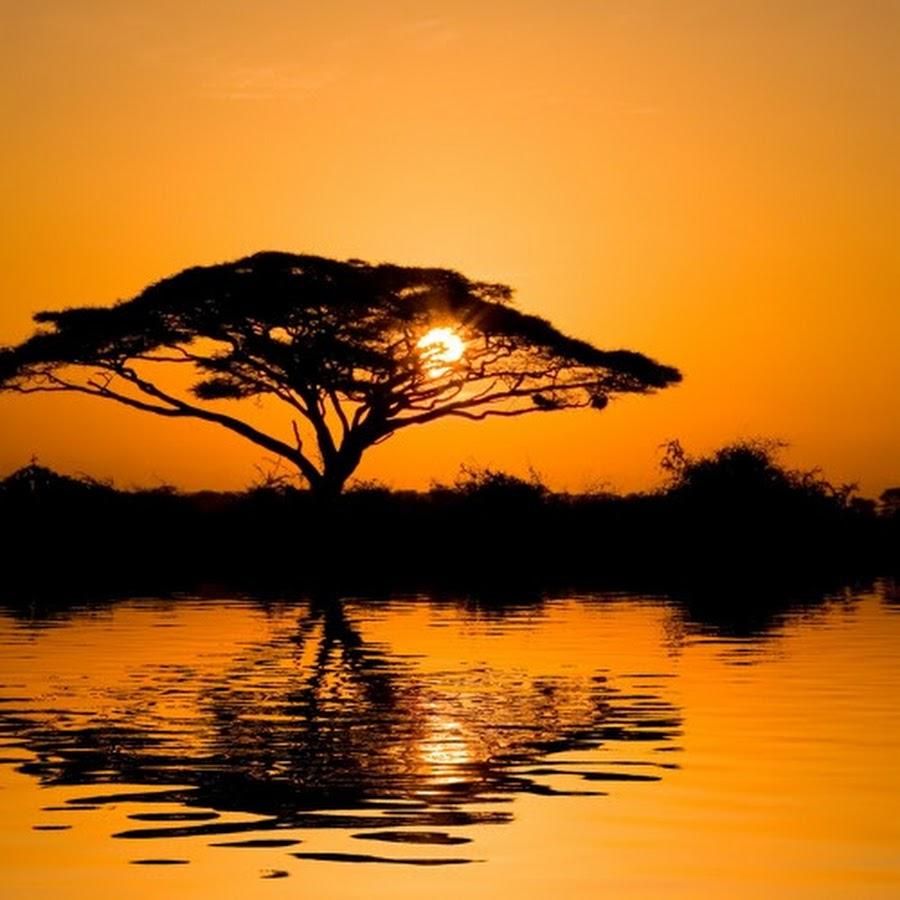 ночью, много персонажей на одной картинке из игры характер