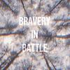 bravery in battle