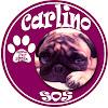 Carlino SOS
