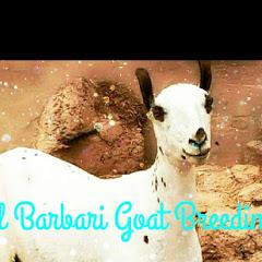 Barbari Goats of Balochistan YouTube Stats, Channel