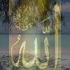 AbdulHamid99