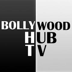 Bollywood Hub Net Worth