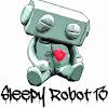 sleepyrobot13