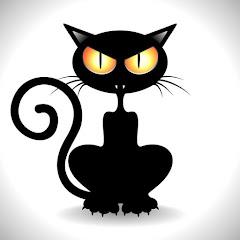 Mr. CatMan