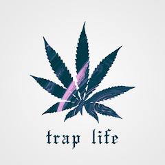 TRAP LIFE Net Worth