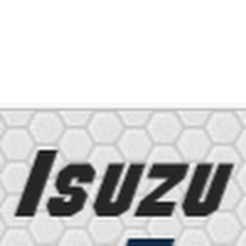 Isuzu 4HE1 Engine for Isuzu NPR, Isuzu NQR | FunnyDog TV