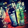 Honig Vineyard & Winery