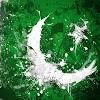 Pakistan Australia Friendship Association