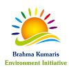 BK Environment