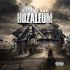NP Hozman