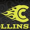 Collins + Company Advertising Design