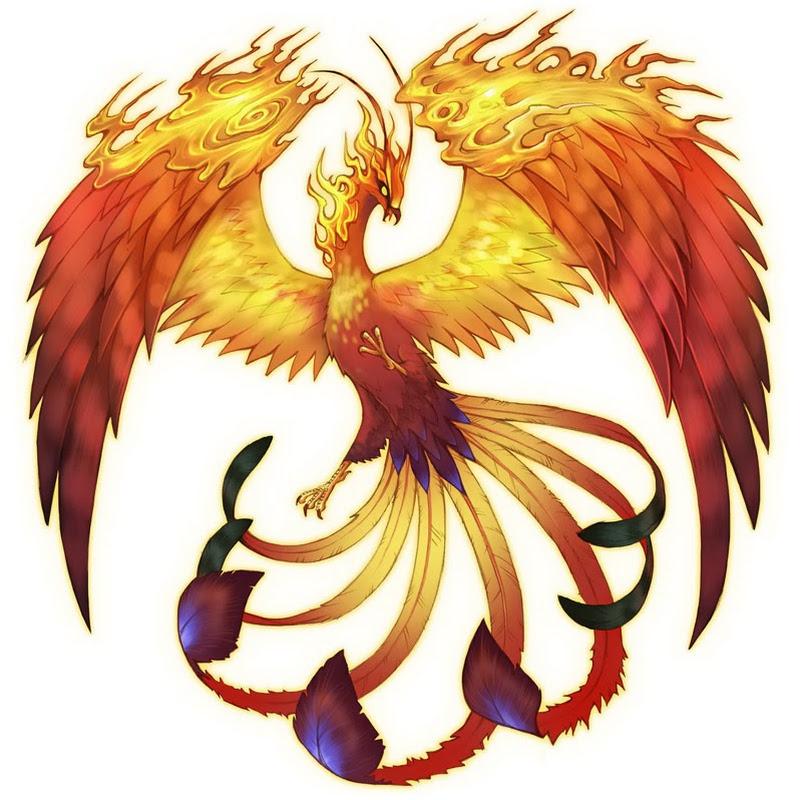 youtubeur phoenix1291