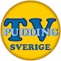 Pudding-TV Sverige
