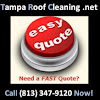Tampa Roof Cleaning