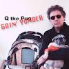 Q The Pug