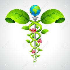 Arokiya Clinic Net Worth