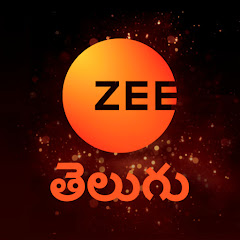 Zee Telugu Net Worth