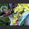 designelementflowers