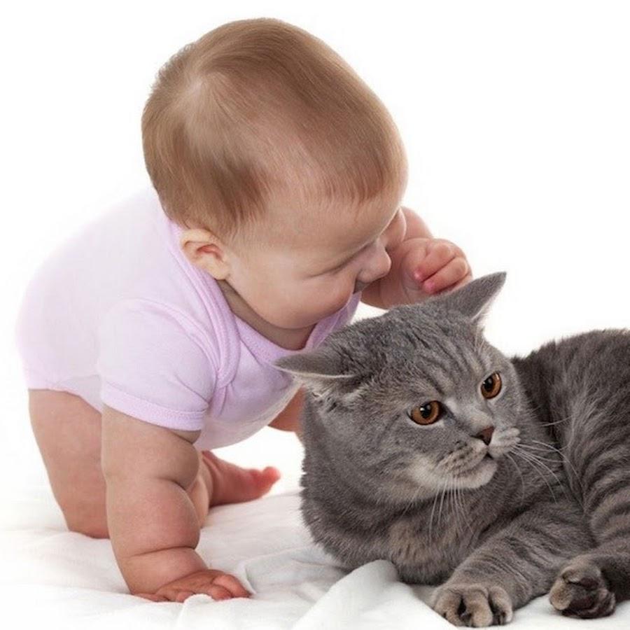 День, картинки дети и кошки