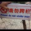 LanguageAdvice