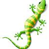 GeckoResearch