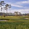 Pams OC Golf