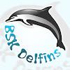 Delfīns Rīga