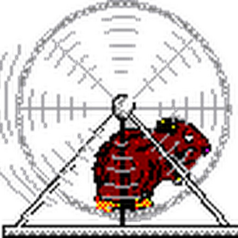 Летием, гифка белки в колесе