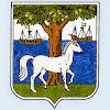 Club de Pelote de Ciboure - Ziburuko Gazteak - Chaîne officielle