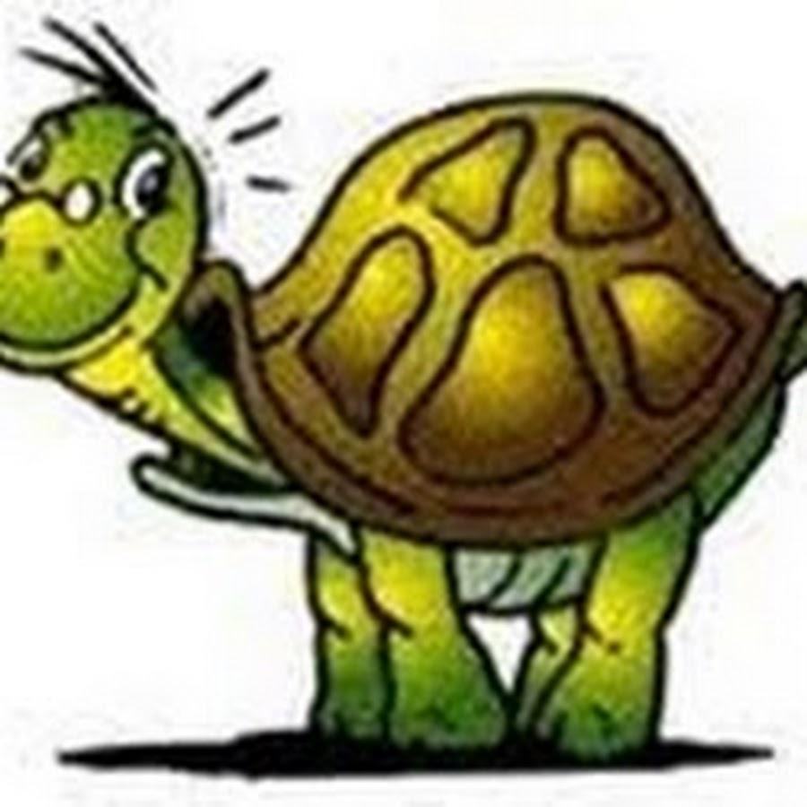 Картинки анимации с черепахой