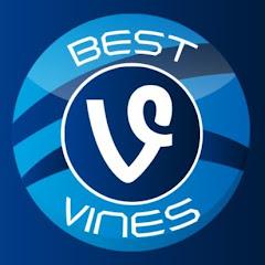 BEST VINES Net Worth