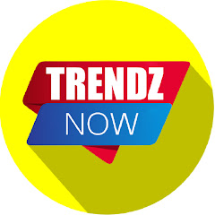 Trendz Now Net Worth