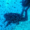 In Deep Diving & Marine Services