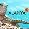 Alanya.Dk