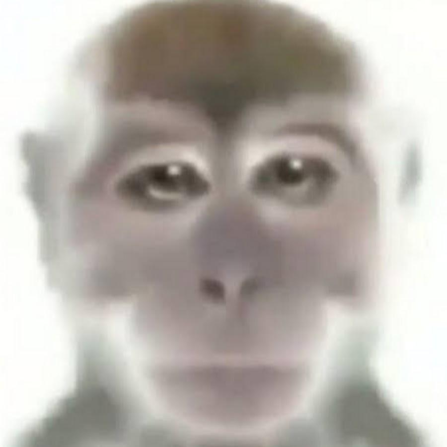 Аватар картинка приколы