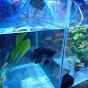 ISHLAHUNA CHANNEL