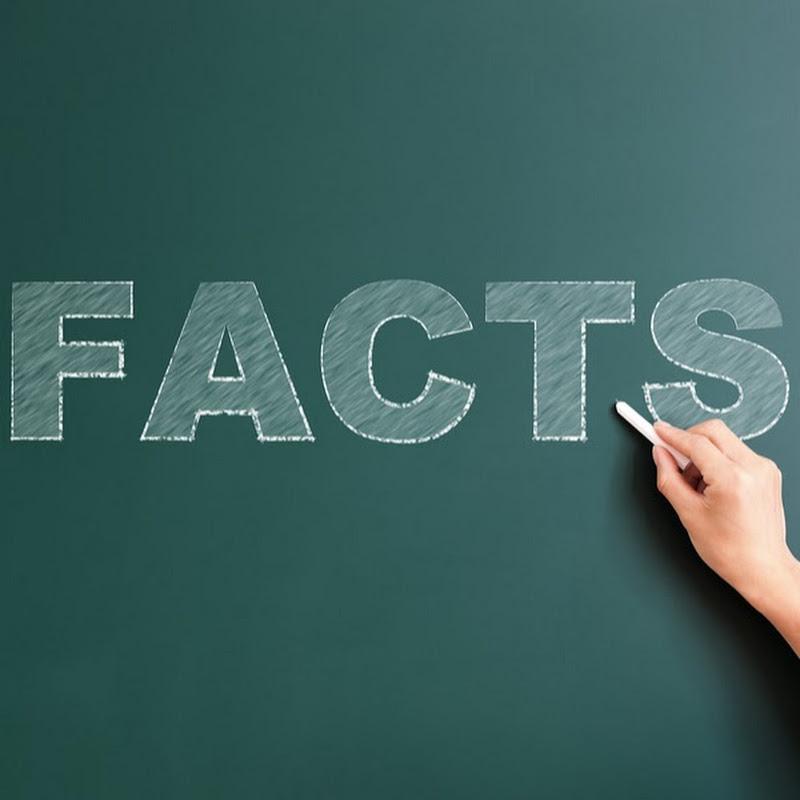 Для детей, факты картинки для презентации