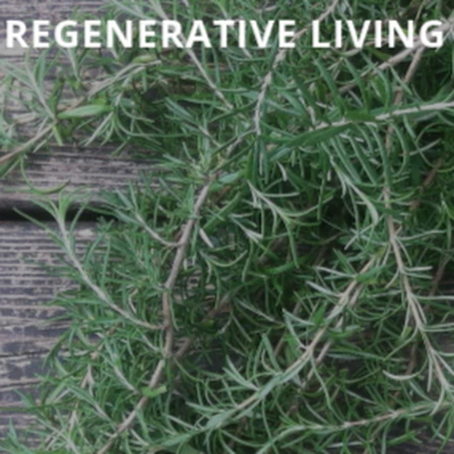 Regenerative Living School