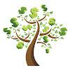 Kash Tree