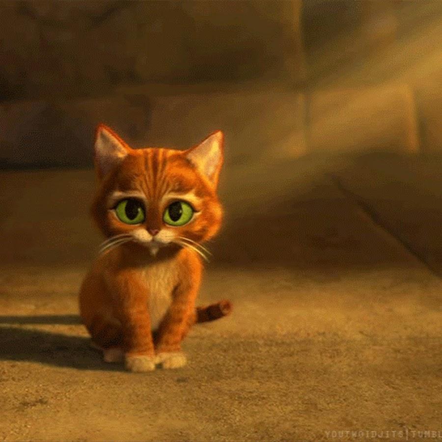 Солнцем дождем, гифка кота из шрека с грустными глазами