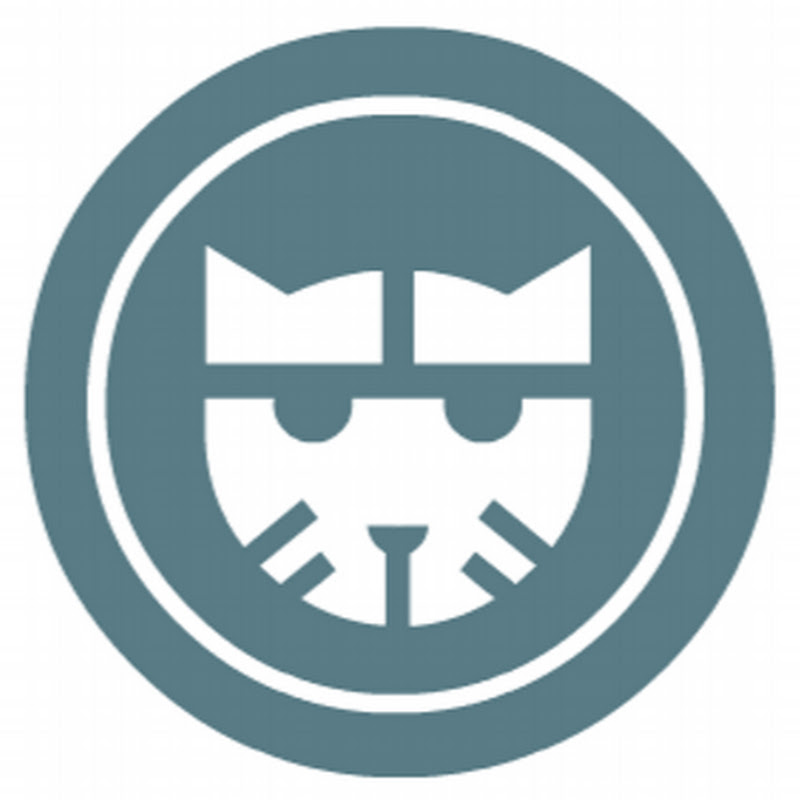 youtubeur Wildcat Channel