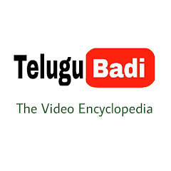 Telugu badi (తెలుగుబడి) Net Worth