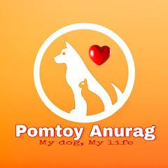 Pomtoy Anurag Net Worth