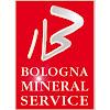 Bologna Mineral Service