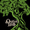 Organic Roots Olive Oil