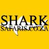 Shark Safaris