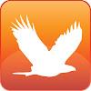 Vista Interactive